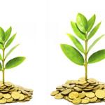 Где найти стартовый капитал для нового бизнеса?