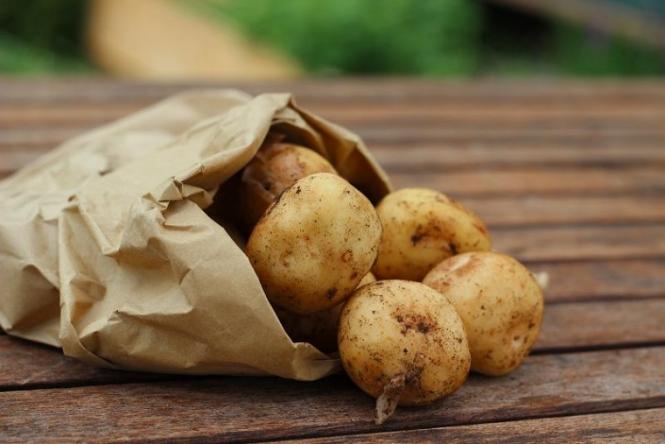 Стоимость картофеля в Европе резко выросла из-за низкого урожая