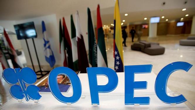 Саудовская Аравия исследует возможный распад ОПЕК