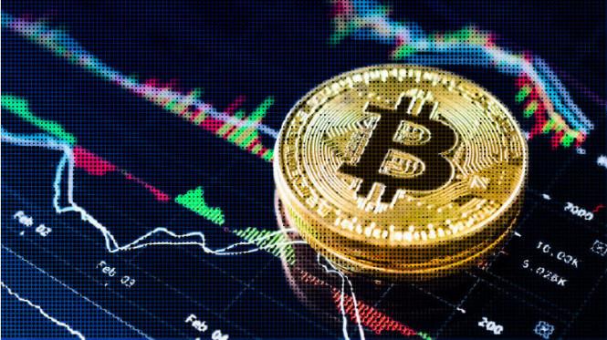 PayPal, инвестиции и возрастающий интерес: биткоин обновил рекорд с лета 2019 года