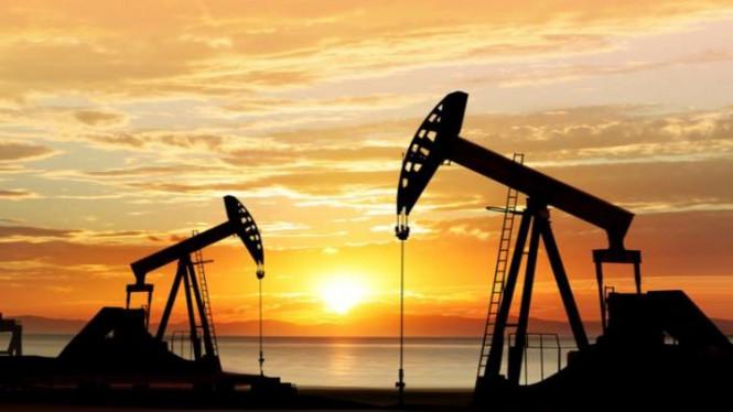 Хватается за соломинку: нефть продолжает наращивать стоимость