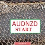 AUDNZD — запускаем лонговую сетку