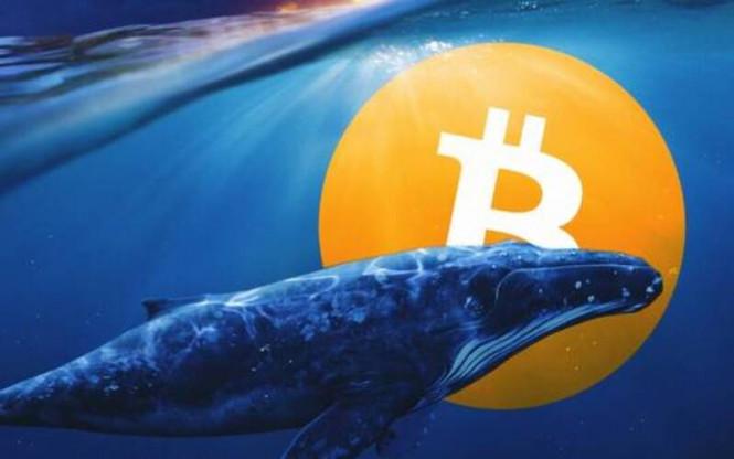 Монета на удачу: знакомимся с теми, кто заработал миллиарды на росте биткоина