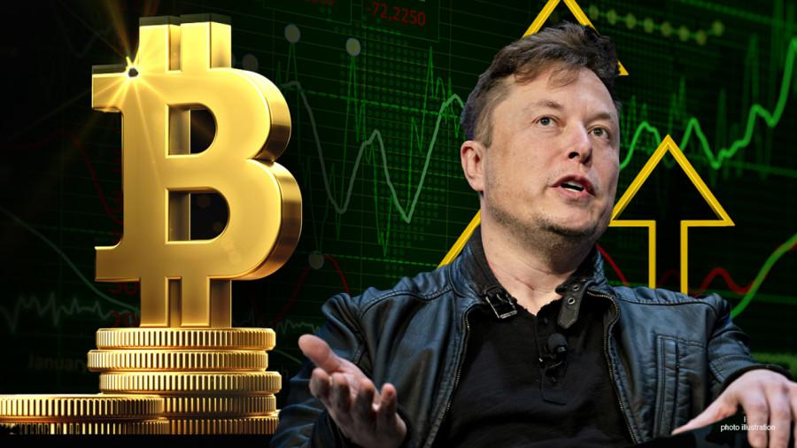 Илон Маск держит в биткоинах сумму более 5 миллиардов долларов