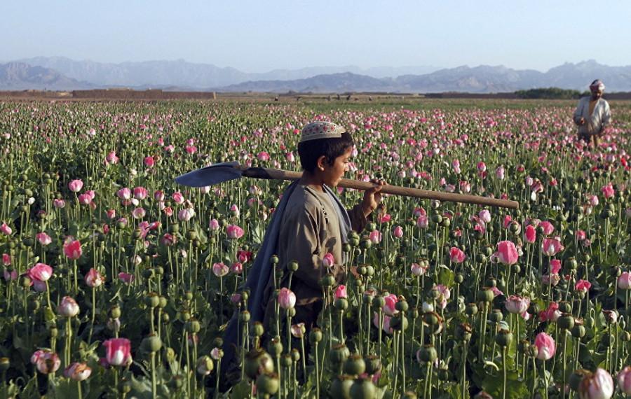 Что досталось талибам: уровень экономики Афганистана в цифрах и фактах